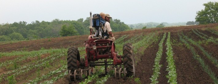 Father and Son on Tractor
