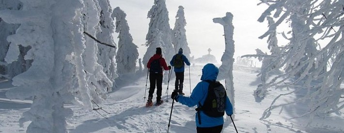 Group Skiing in Heavy Snow